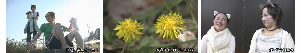 yumenobutai1